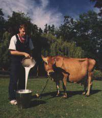 Milk movie vancouver bc